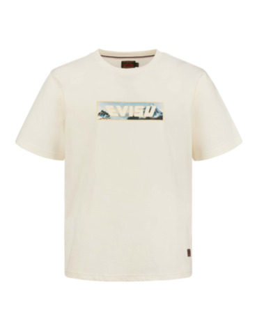 Mount Fuji and Taka Print T-shirt